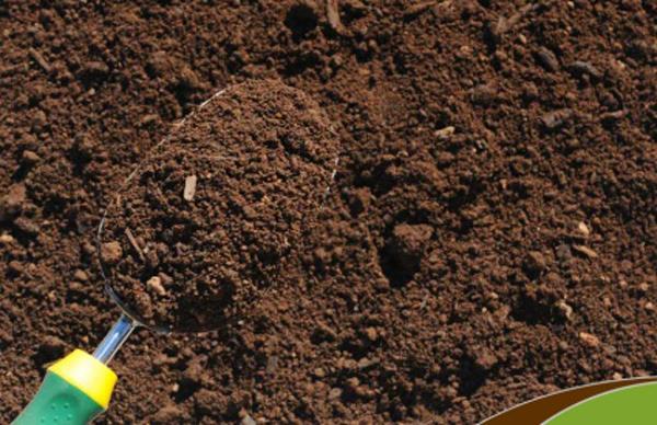 Плодородный грунт имеет нейтральную кислотно-щелочную среду